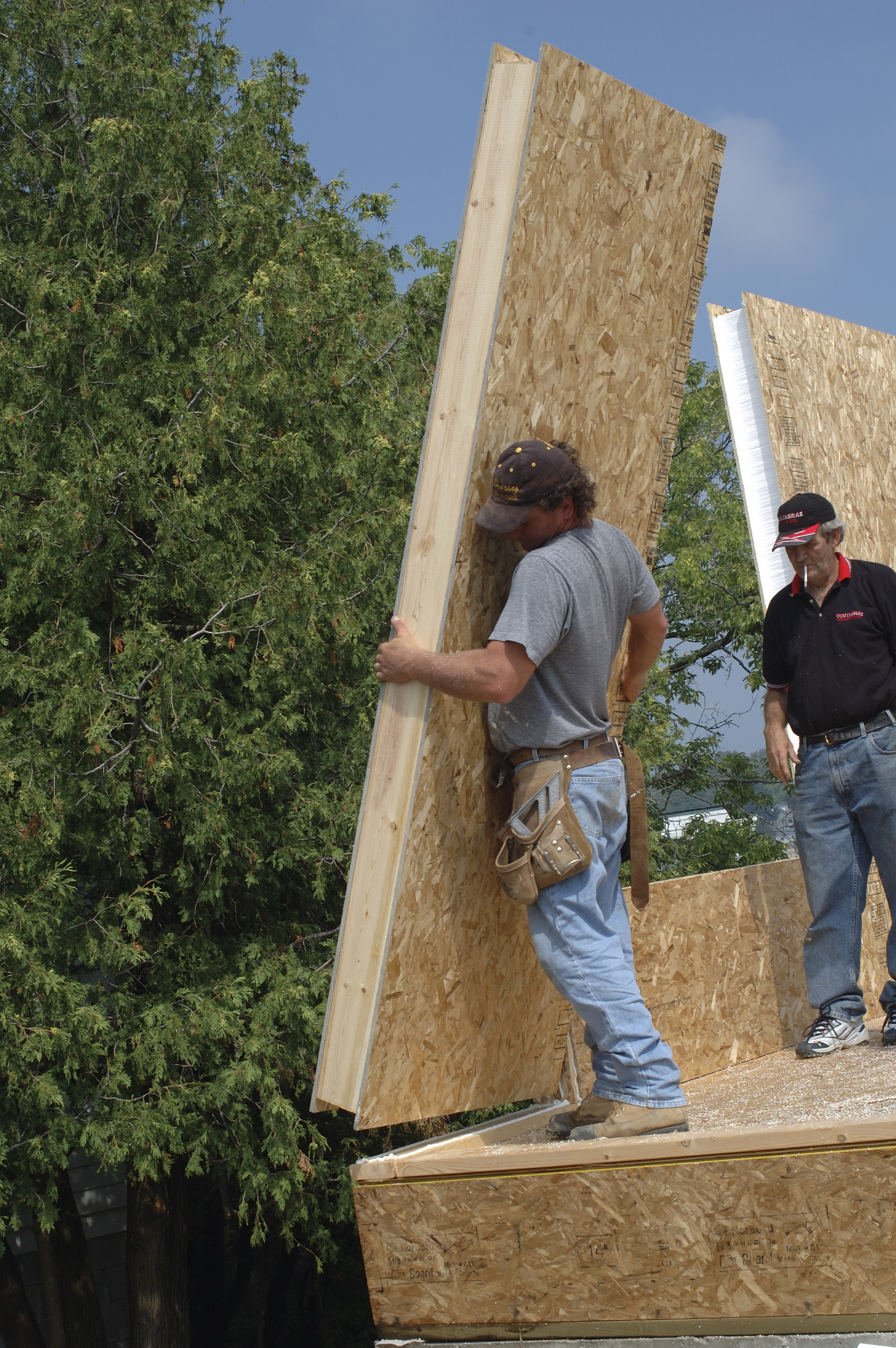 Sips panels a better way to build with this foam board for Building a house with sip panels