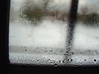 condensation_black